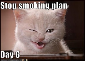 Stop smoking plan  Day 6
