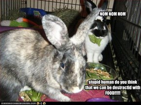 stupid human do you think that we can be destractid with FOOD!!!!!