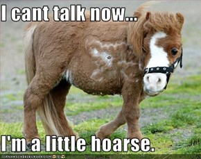 I cant talk now...  I'm a little hoarse.