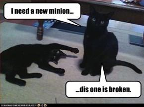I need a new minion...