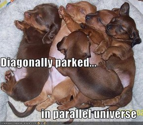 Diagonally parked...    in parallel universe