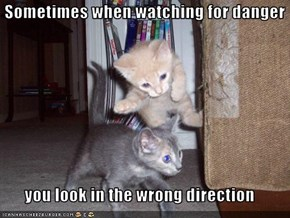 Sometimes when watching for danger  you look in the wrong direction
