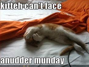 kitteh can't face  anudder munday