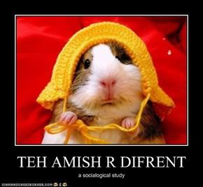 TEH AMISH R DIFRENT