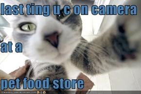 last ting u c on camera at a pet food store
