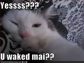 Yessss???  U waked mai??