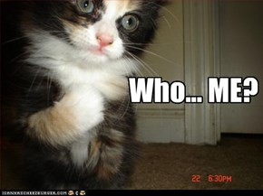 Who... ME?