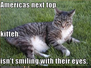 Americas next top  kitteh isn't smiling with their eyes.