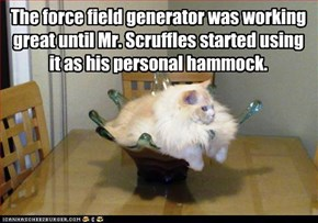 The force field generator was working great until Mr. Scruffles started using it as his personal hammock.