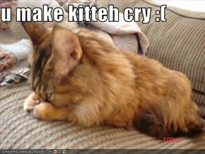 u make kitteh cry :(