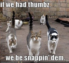 if we had thumbz,  we be snappin' dem.