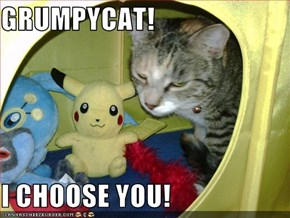 GRUMPYCAT!  I CHOOSE YOU!