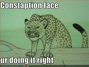 Constaption face  ur doing it right