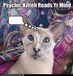 Psychic Kitteh Reads Yr Mind