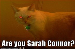 Are you Sarah Connor?