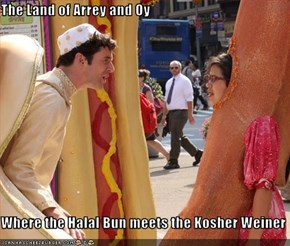 The Land of Arrey and Oy  Where the Halal Bun meets the Kosher Weiner