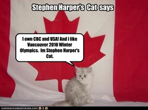 I own CBC and USA! And i like Vancouver 2010 Winter Olympics.  Im Stephen Harper's Cat.