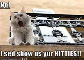 No!  I sed show us yur KITTIES!!
