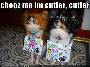 chooz me im cutier, cutier