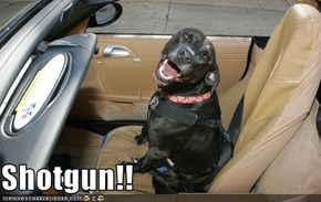 Shotgun!!