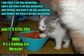 I ate from it all day yesterday. ... and u ate from it all day yesturday. ... and Stripes ate from it all day yesterday. ... and Ginger ate from it all day yesterday. ...