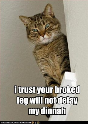 i trust your broked leg will not delay my dinnah