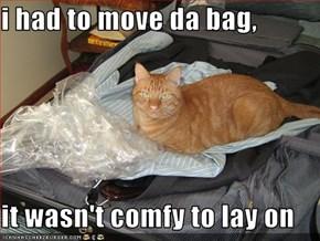 i had to move da bag,  it wasn't comfy to lay on