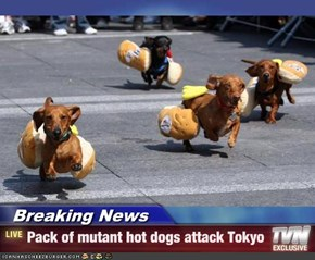 Breaking News - Pack of mutant hot dogs attack Tokyo
