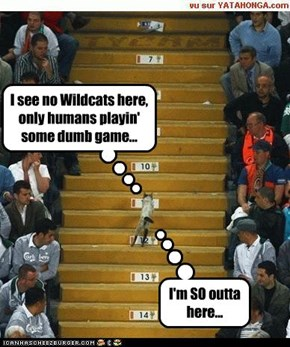 I see no Wildcats here, only humans playin' some dumb game...