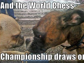 And the World Chess   Championship draws on.