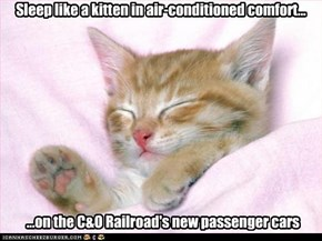Sleep like a kitten in air-conditioned comfort...