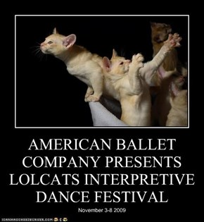 AMERICAN BALLET COMPANY PRESENTS LOLCATS INTERPRETIVE DANCE FESTIVAL