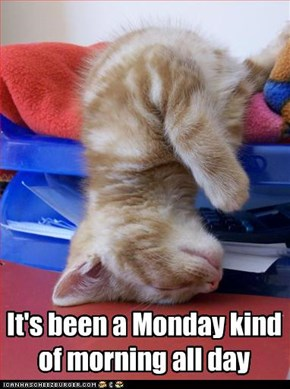 It's been a Monday kind of morning all day