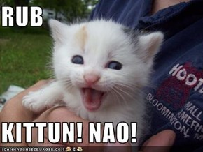 RUB  KITTUN! NAO!
