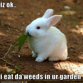 iz ok..  i eat da weeds in ur garden