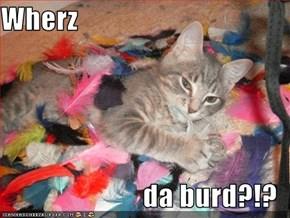 Wherz  da burd?!?