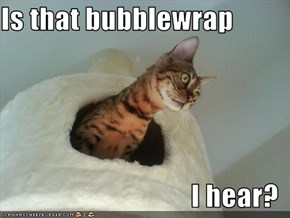 Is that bubblewrap  I hear?