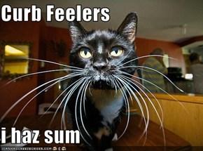 Curb Feelers  i haz sum