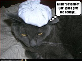 "All ur ""Basement Cat"" jokes givz me hedayk..."