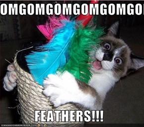 OMGOMGOMGOMGOMGOMGOMG  FEATHERS!!!