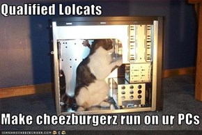 Qualified Lolcats  Make cheezburgerz run on ur PCs