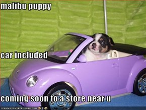 malibu puppy car included coming soon to a store near u