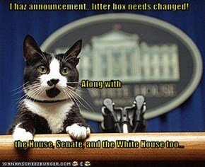 I haz announcement...litter box needs changed! Along with the House, Senate, and the White House too...