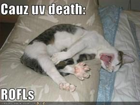 Cauz uv death:  ROFLs