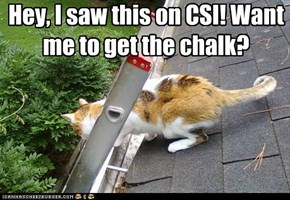 Hey, I saw this on CSI! Want me to get the chalk?