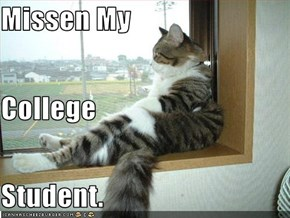 Missen My  College  Student.
