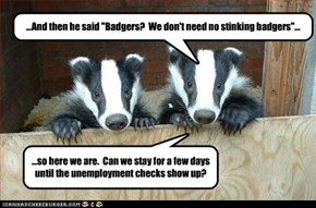 "...And then he said ""Badgers?  We don't need no stinking badgers""..."