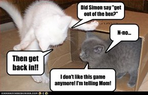 "Did Simon say ""get out of the box?"""