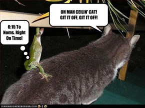 OH MAH CEILIN' CAT!  GIT IT OFF, GIT IT OFF!