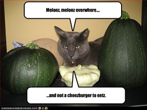 Melonz, melonz everwhere....